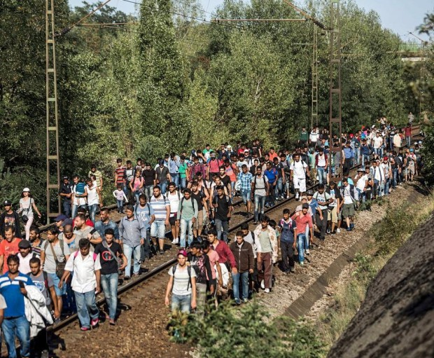 Migrants walk on the railway tracks between Bicske and Szar, some 40 kms west of Budapest